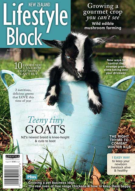 NZ Lifestyle Block Magazine Subscription
